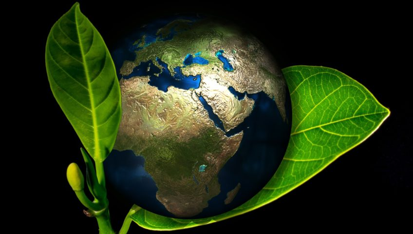 safe healthy earth planet eco friendly