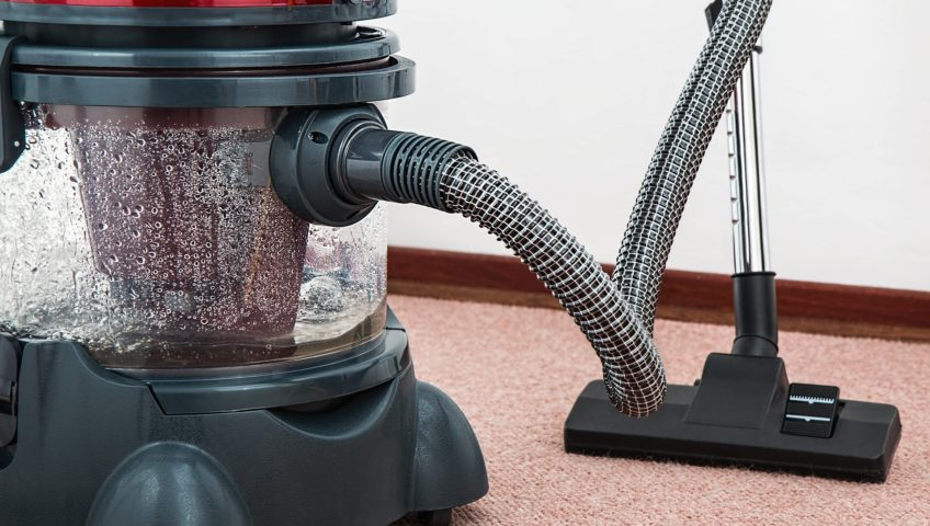 carpet shampooing, cleaning, odor removal, mold, mildew